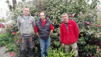 Tony Mevel, Pierre Bouguyon, Mickaël Pennec,  l'équipe est prête à embellir votre jardin...